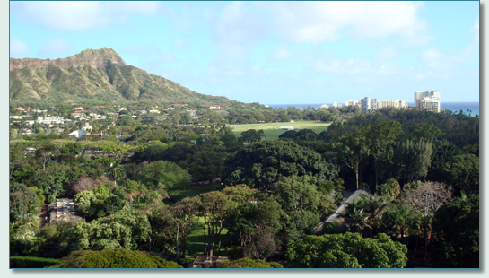 Kapiolani Park, Waikiki, with Diamond Head background