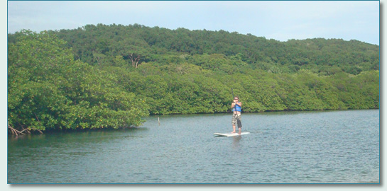 Stand-up Paddling the estuary behind Mahogany Bay, Roatan