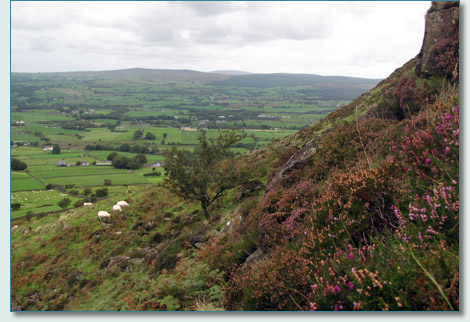Slemish Mountain, Co.Antrim, Northern Ireland